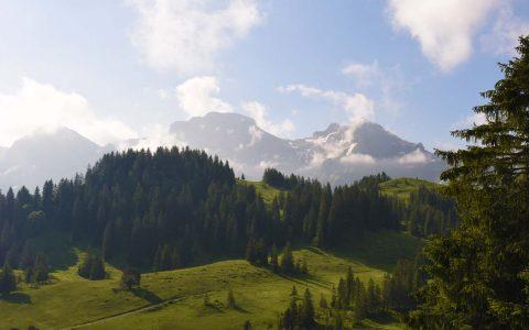 Adlerhorst Panorama Hoch Ybrig Berge
