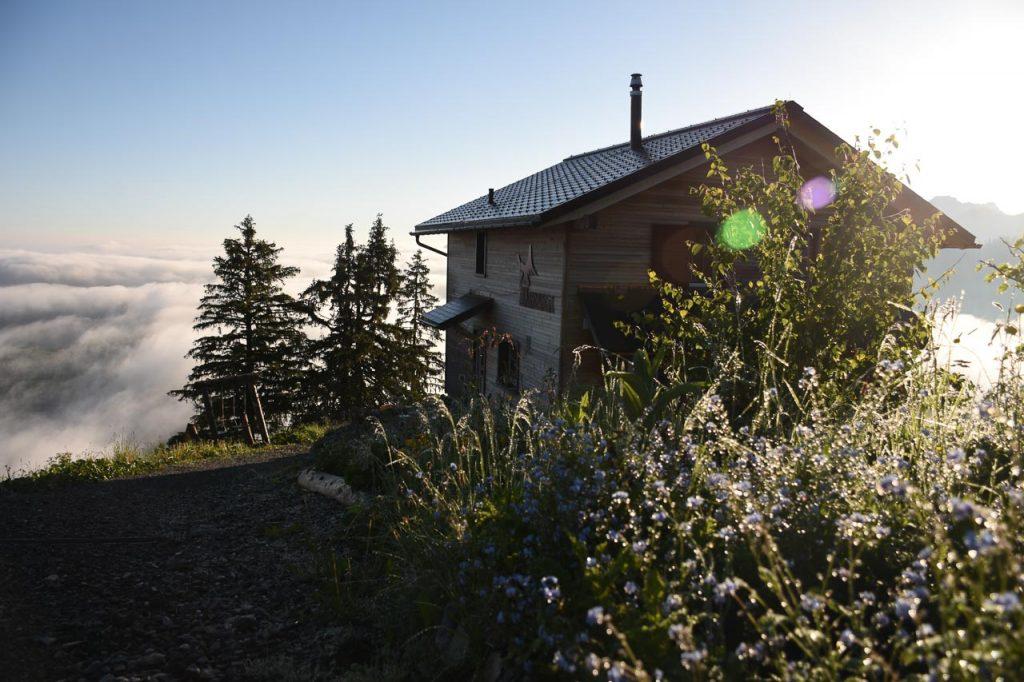 Adlerhorst Morgen Blumen aussen Berggasthaus Oberiberg Hoch-Ybrig