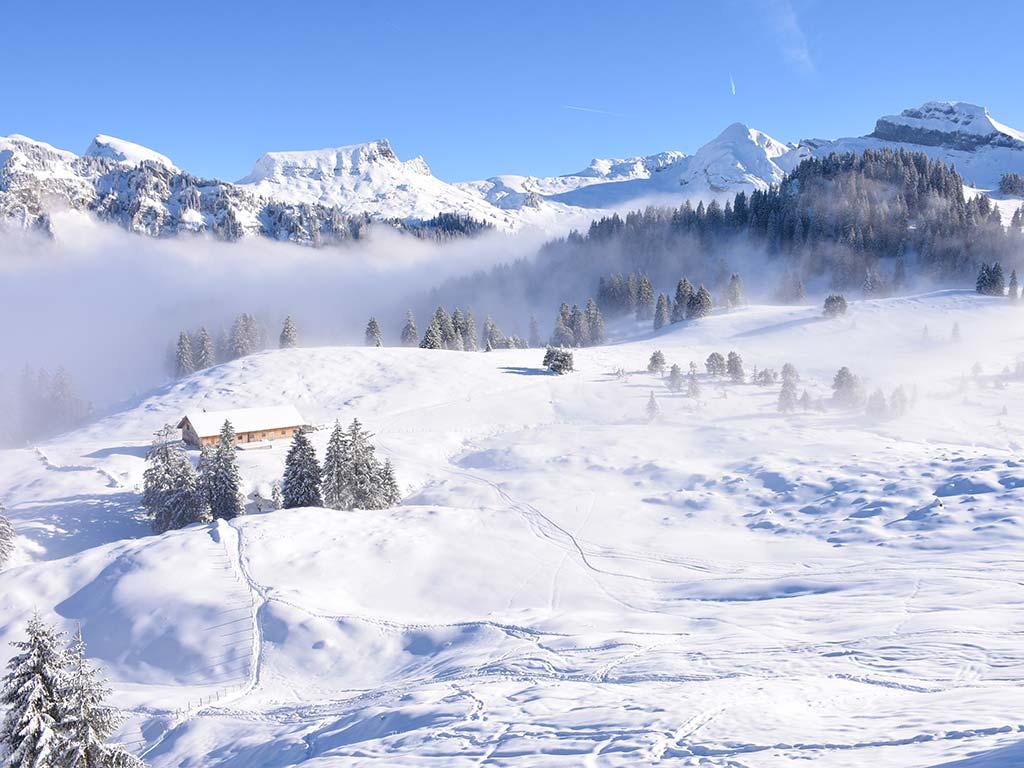 Berggasthaus Adlerhorst Winter Tubenmoos Hoch-Ybrig Schneeschuhtour Winterwanderweg