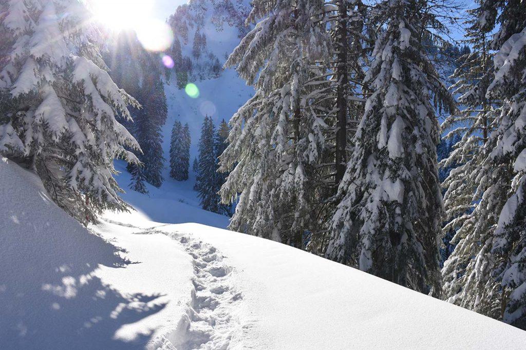 Schneeschuhtour Roggenstock
