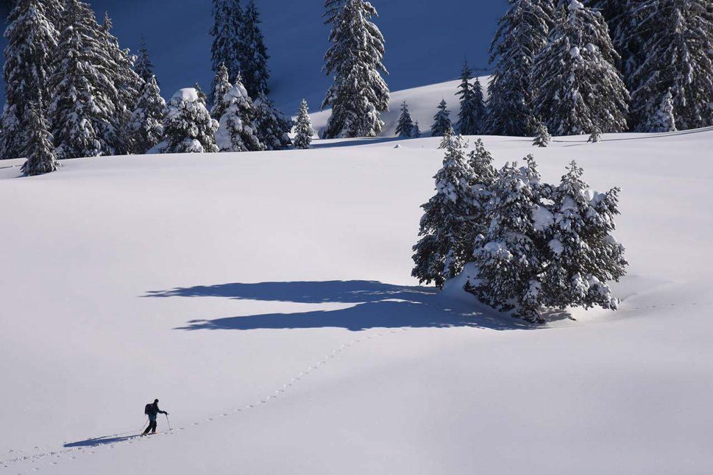Schneeschuhwanderer im Tubenmoos