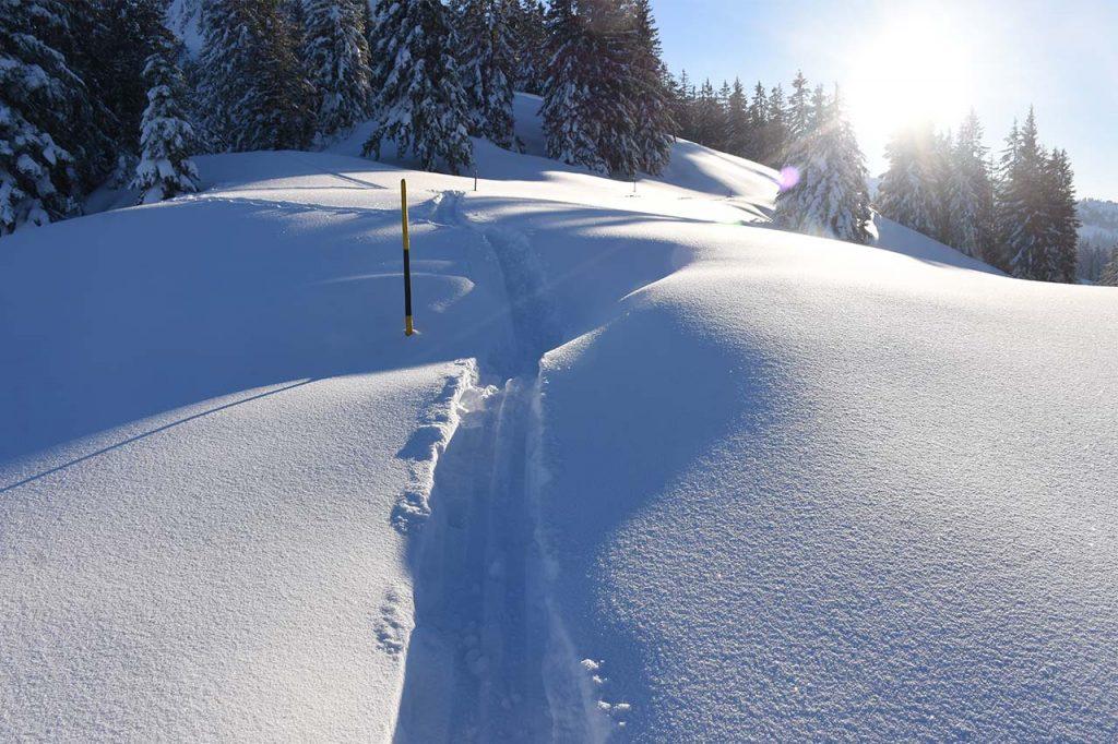 Schneeschuhtrail rund um den Roggenstock