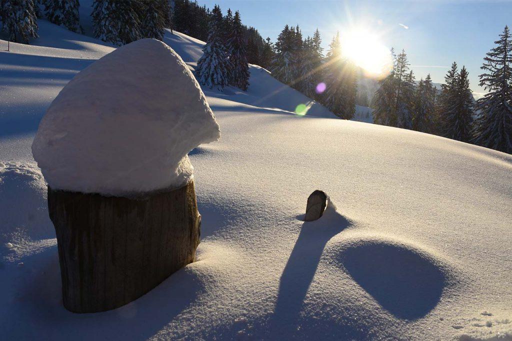 Winterlandschaft Adlerhorst