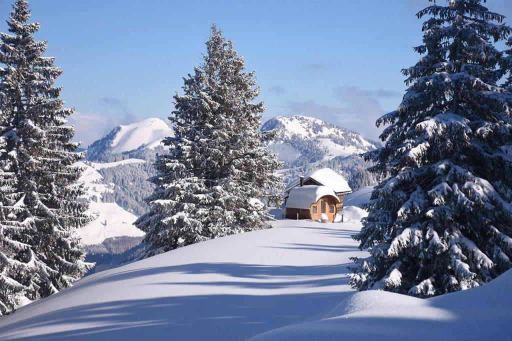 Alpen-Fass-Sauna Adlerhorst Oberiberg
