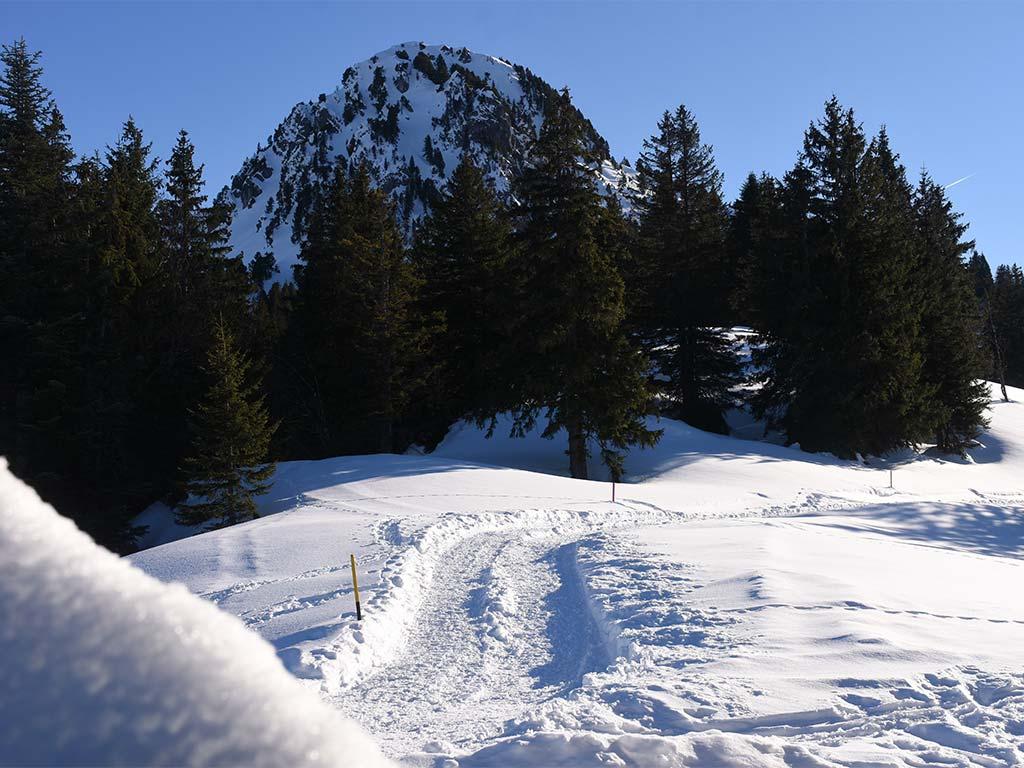 Adlerhorst Winterwanderweg Roggenstock
