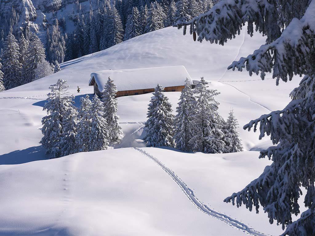 Schneeschuhwanderweg Tubenmoos