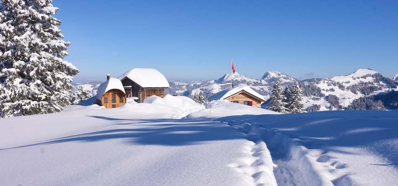 Panorama Bergbeizli Adlerhorst Winter Schnee