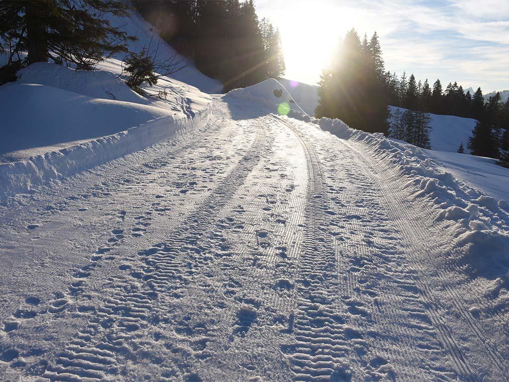 Sonnenuntergang Hoch-Ybrig Fuederegg Adlerhorst Winterwanderweg
