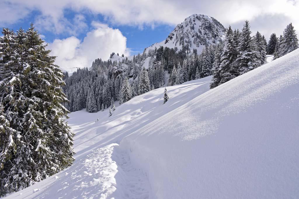 Roggenstock Adlerhorst Schneeschuhwanderweg Oberiberg