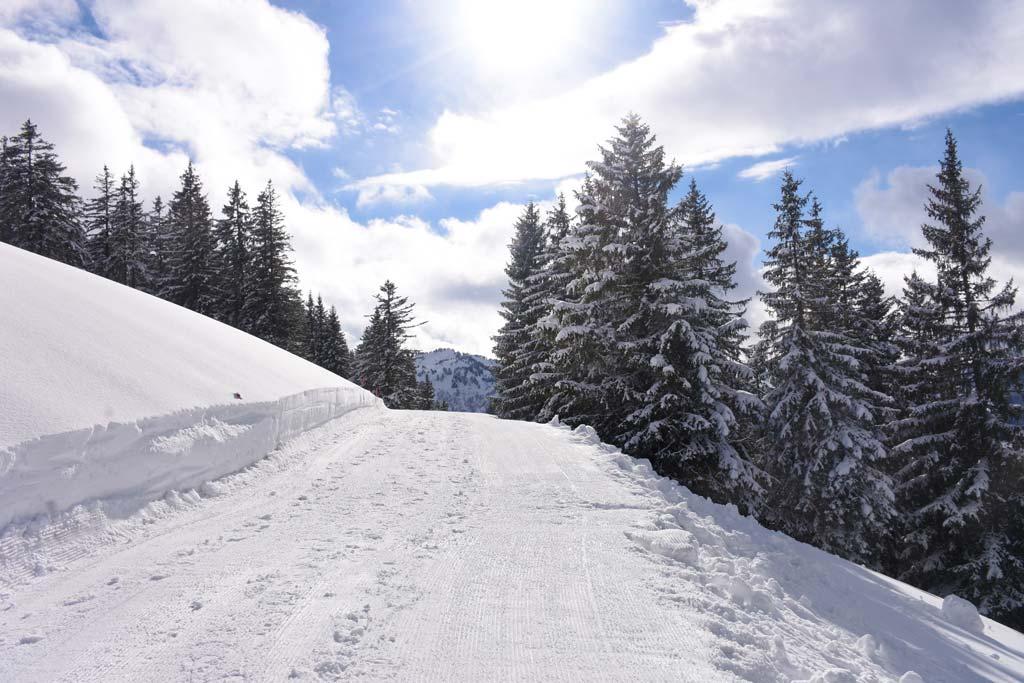 Winterwanderweg Piste Roggenstock Fuederegg Adlerhorst