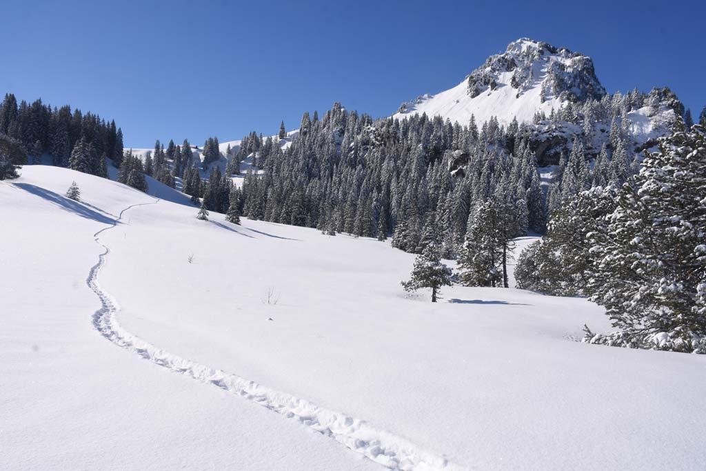 Rund um den Roggenstock Winterwanderung Roggenegg