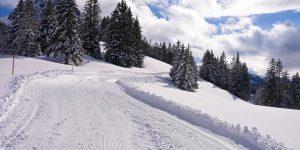 Roggenstock Winterwanderweg Piste Hoch-Ybrig Adlerhorst
