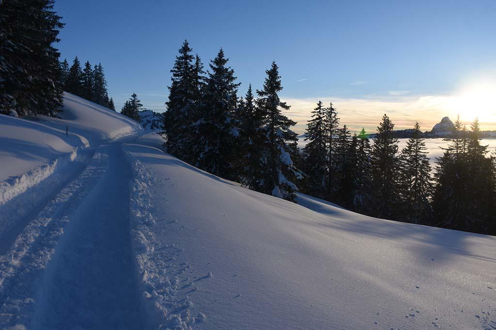 Adlerhorst Winterwanderweg Fuederegg Hoch-Ybrig