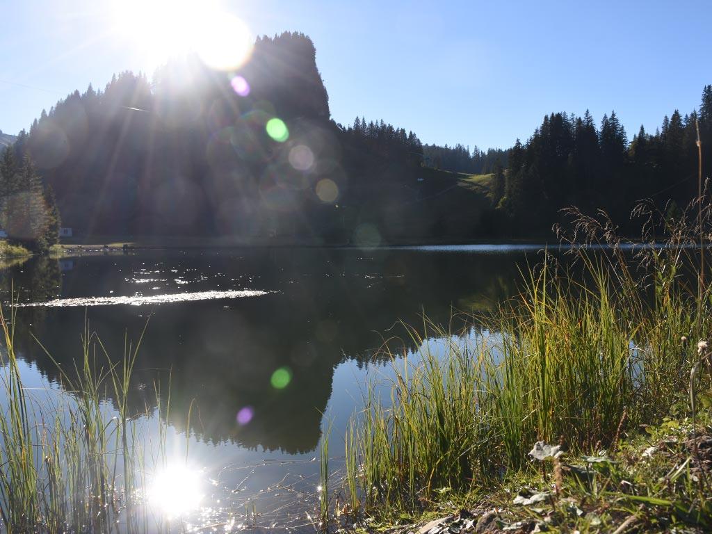Seeblisee Hoch-Ybrig Bergsee Alpen