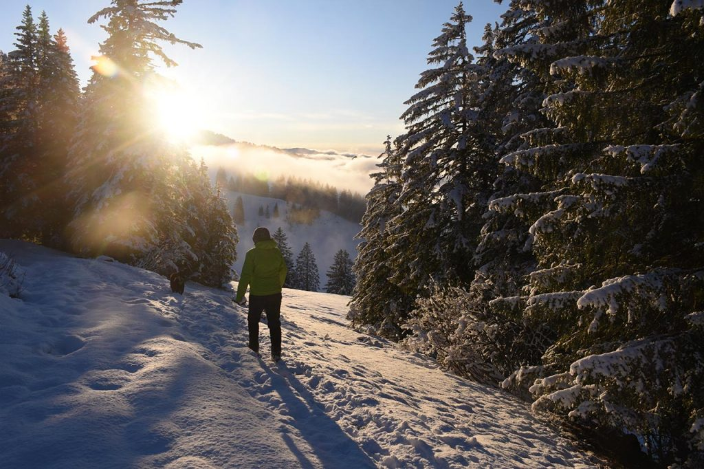 Schneeschuhwanderung Oberiberg Hoch-Ybrig Winter