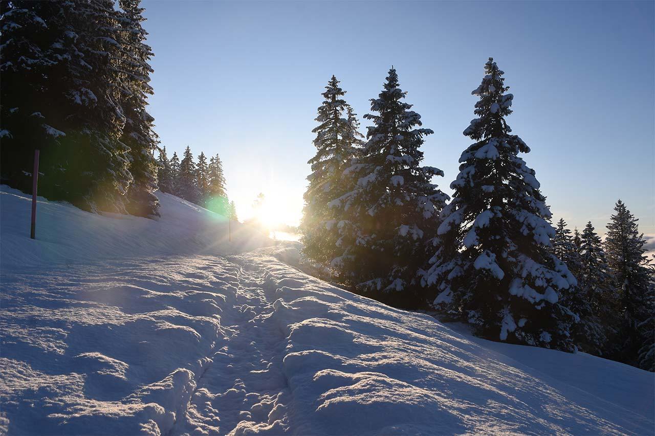 Schneeschuhpfad Adlerhorst Sonnenuntergang