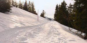 Schneeschuhwanderweg Adlerhorst Winter Zugang