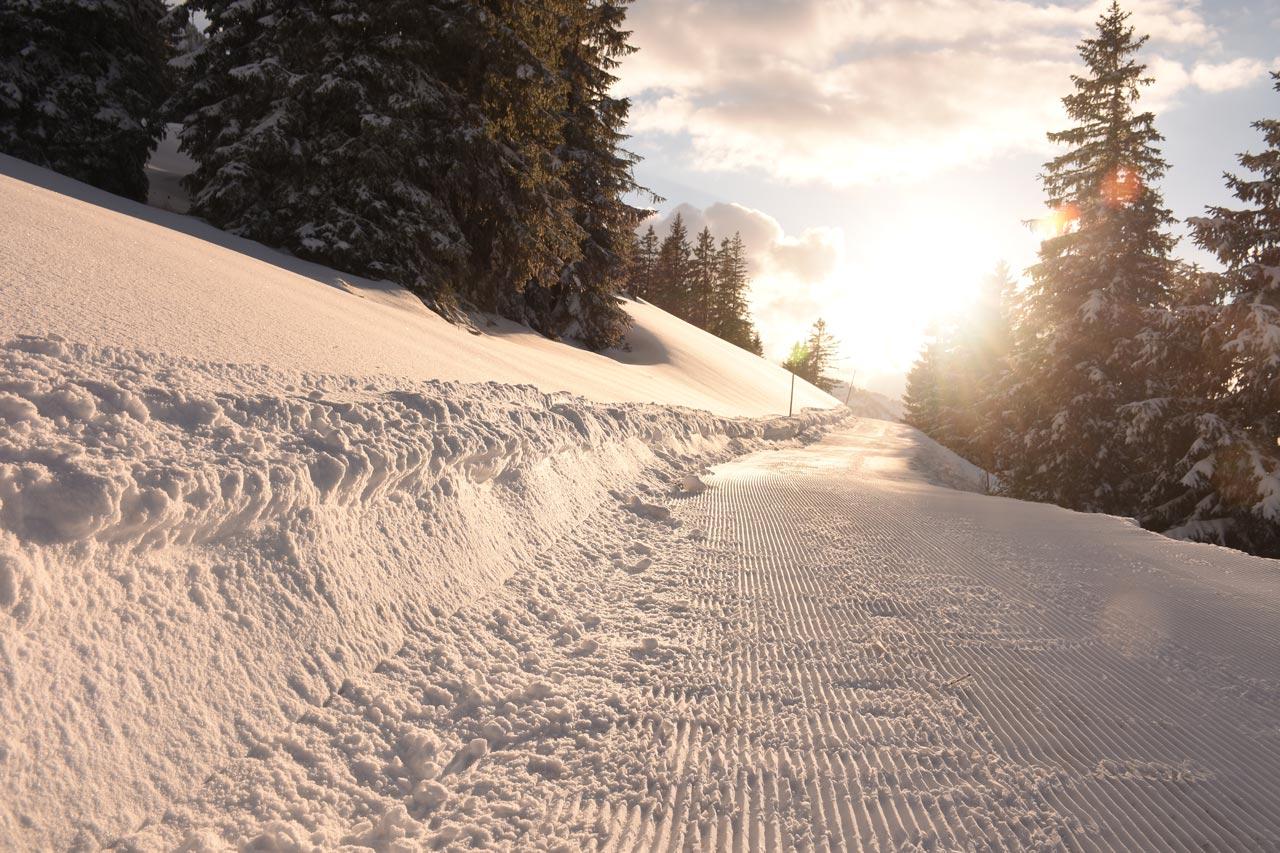 Adlerhorst Winter-Winterwanderweg Piste Hoch-Ybrig