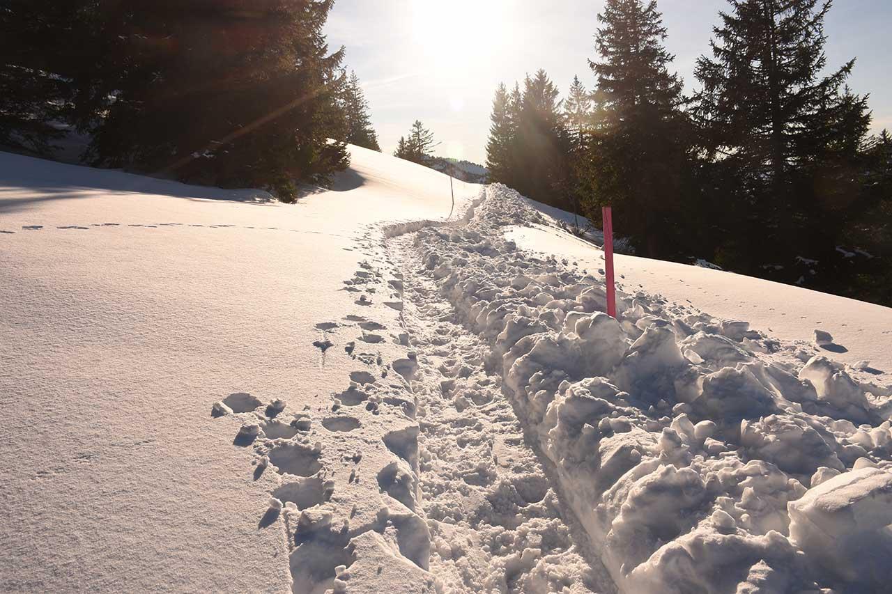 Schneeschuh-Winter-Wanderweg Adlerhorst Fuederegg