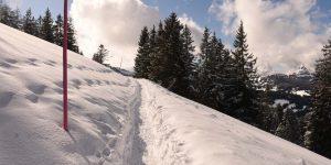 Schneeschuhwanderweg Adlerhorst Fuederegg Winter Schnee