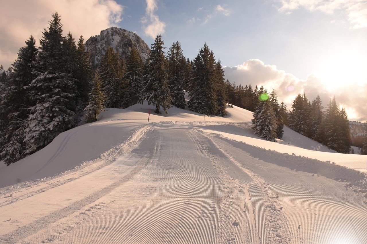 Piste Adlerhorst Winter-Winterwanderweg