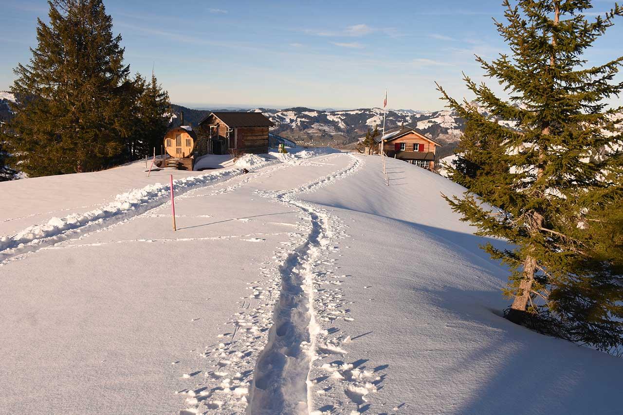 Adlerhorst Schneeschuh-Tour Winter-Wanderweg