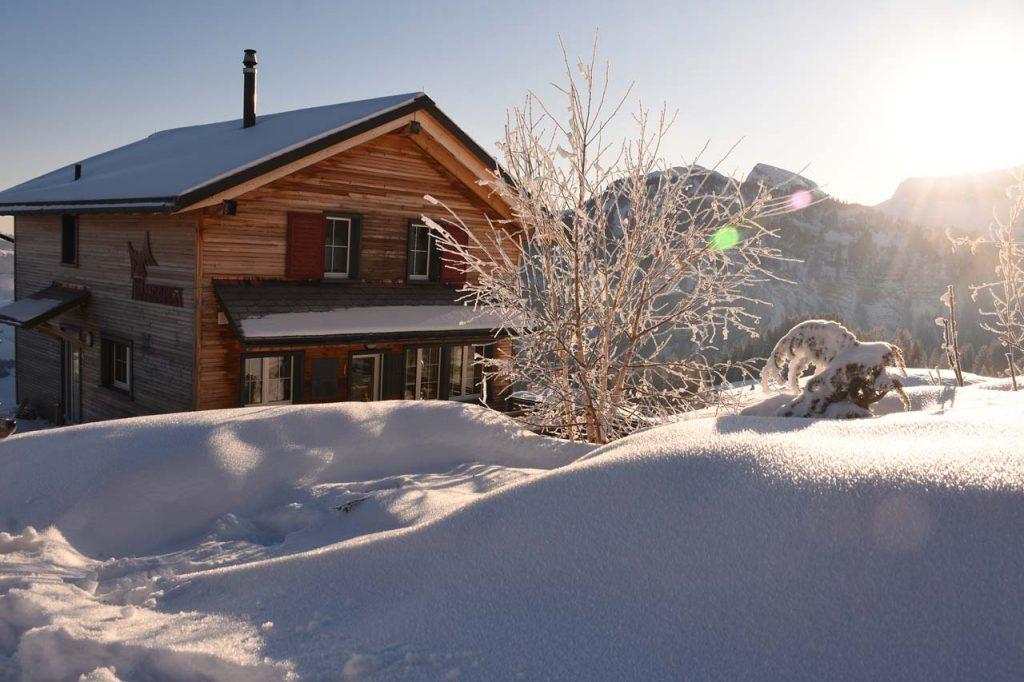Adlerhorst Wintermorgen frisch verschneit